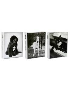 """Фотоальбом 200фото 10*15см, """"Черно-белый животные"""" Вельт 163988"""